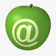 E-mail Email Detox